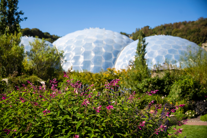 Flower beds infront of Eden Project Biomes